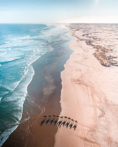 Drone  Aquatic Sport Beach Beauty In Nature Camels Day Dronephotography Horizon Horizon Over Water Land Motion Nature Outdoors Sand Sand Dune Scenics - Nature Sea Sky Sport Surfing Tranquil Scene Tranquility Water Wave