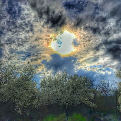 Showcase April Nature Spring Has Sprung Spring 2016 Spring Storms Spring Has Arrived Springtime Spring Into Spring Natural Beauty Beautiful Nature Beautiful Sky Spring Trees Harrisburg PA Skylovers Sunset Sun Sunset Silhouettes Sunset #sun #clouds #skylovers #sky #nature #beautifulinnature #naturalbeauty #photography #landscape Skyporn Sky And Clouds Sky_collection Harrisburg