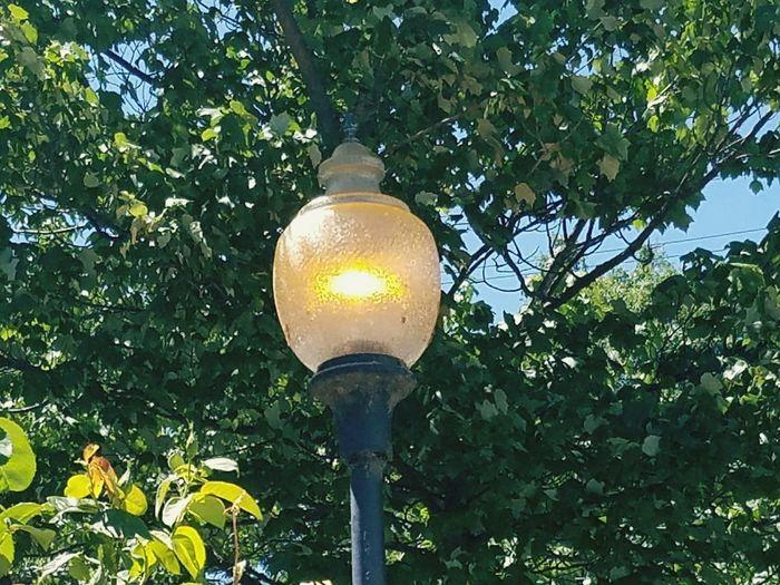 Light in daytine ,lightpost Taking Photos