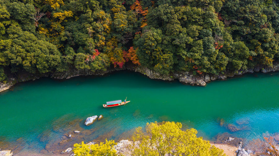 High angle view of boat on river against trees in forest