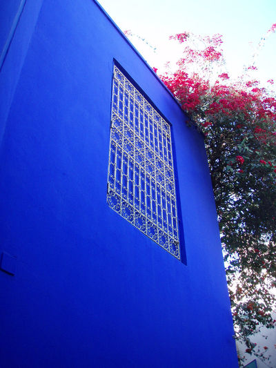Adventure Africa Architecture Architecture Blue Bright Copy Space Flowers Garden Low Angle View Marrakech Morocco Nature Photography Red Rich Colors Saturated Saturation Texture Travel Vibrant Wall Window