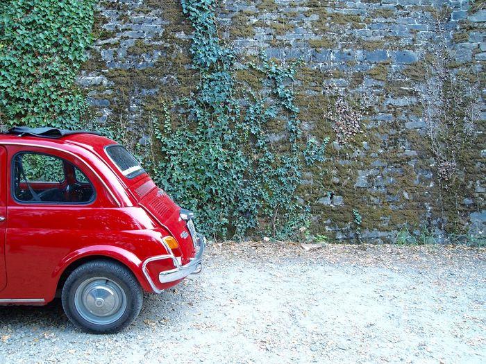 Bambino Car Europe Fiat Fiat500 IT Italy Tuscany Vintage Vintage Cars