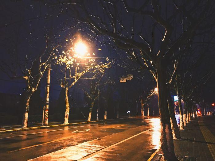 still the Jinsha road Night Tree Illuminated Outdoors Road Real People Nature No People City Alone