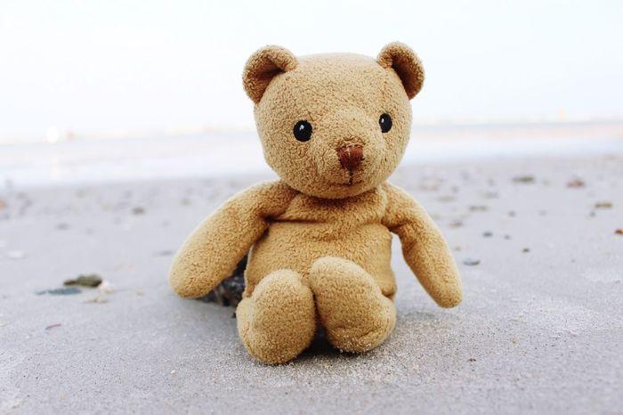 My Bear on the Beach .... Mymheegoeverwheres My Bear Story Taking Photos Huahin Relaxing Moments EyeEm Best Shots