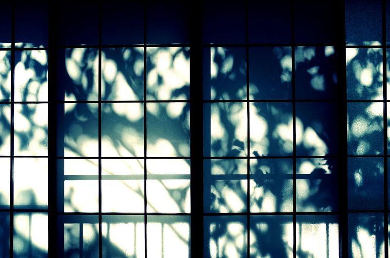 Streetphotography Gr Hakone Trip