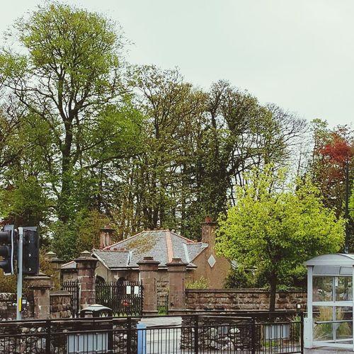 UK Diaries 7.1 Samsung Galaxy S6 Edge Travelling United Kingdom LochLomond Naturelovers