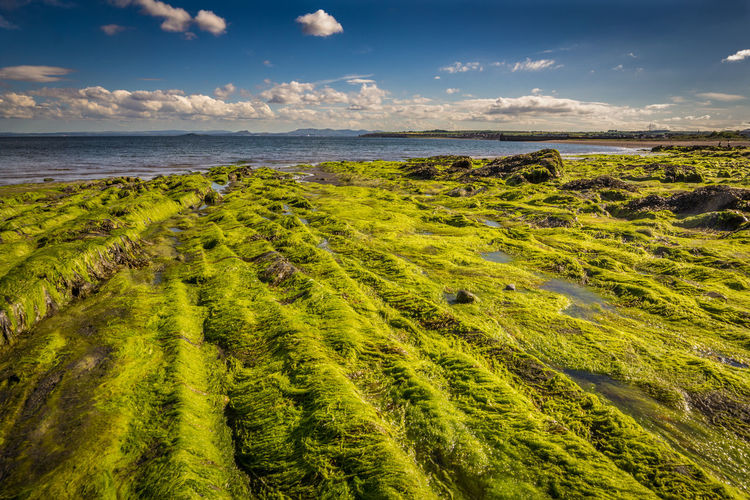 Beauty In Nature Cloud - Sky Day Green Color Horizon Over Water Landscape Nature No People Outdoors Scenics Sea Sky Tranquil Scene Tranquility Water