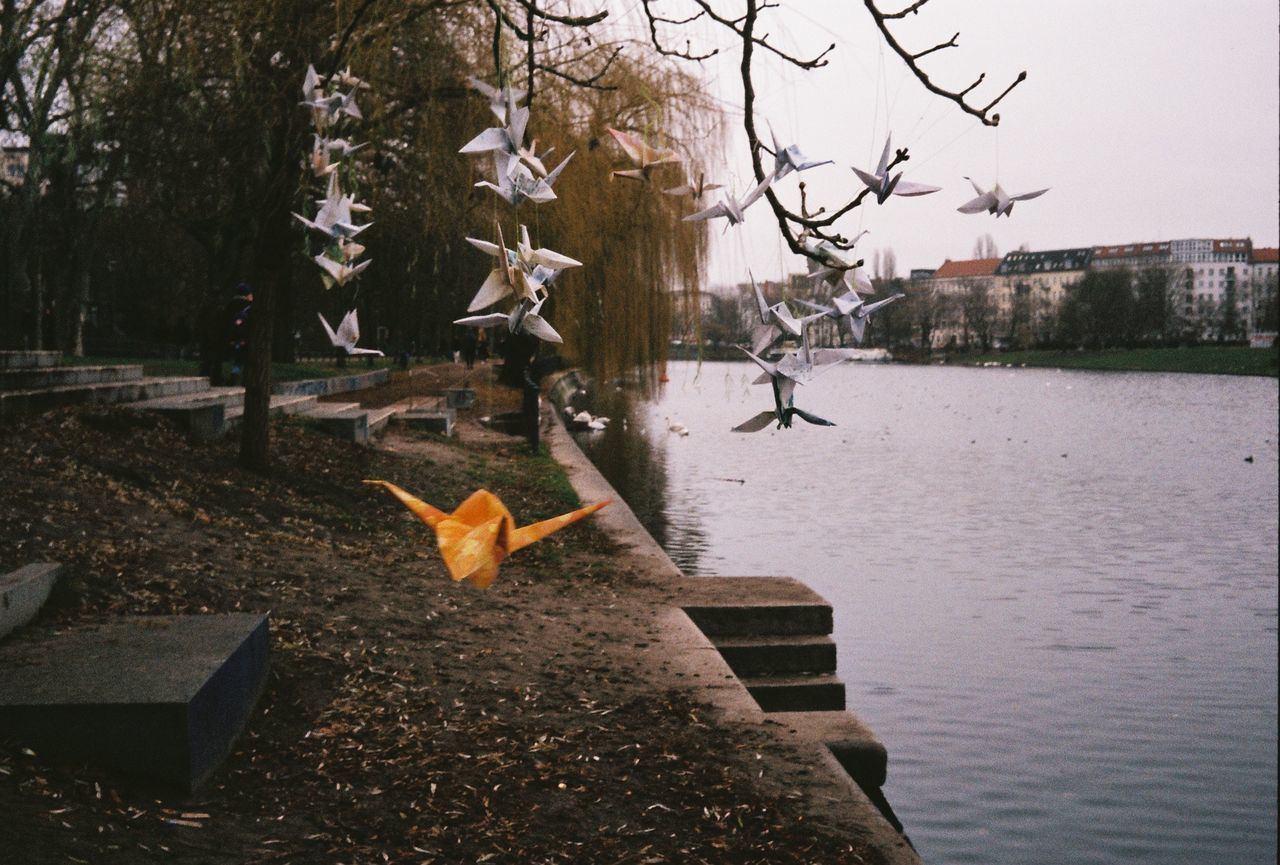 VIEW OF A BIRD FLYING OVER LAKE