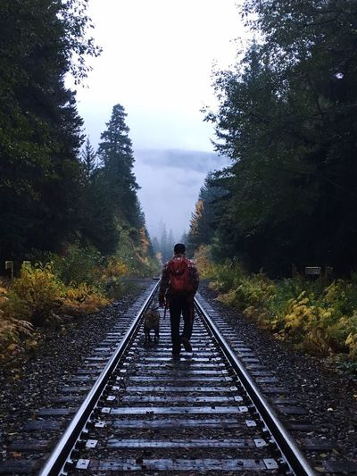Man With Dog Walking On Railroad Tracks Amidst Trees Against Sky