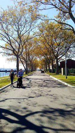 Taking Photos Enjoying Life EyeEm Best Shots Light And Shadow Dpatino NYC LIFE ♥ EyeEmonGI Battle Of The Cities Hanging Out