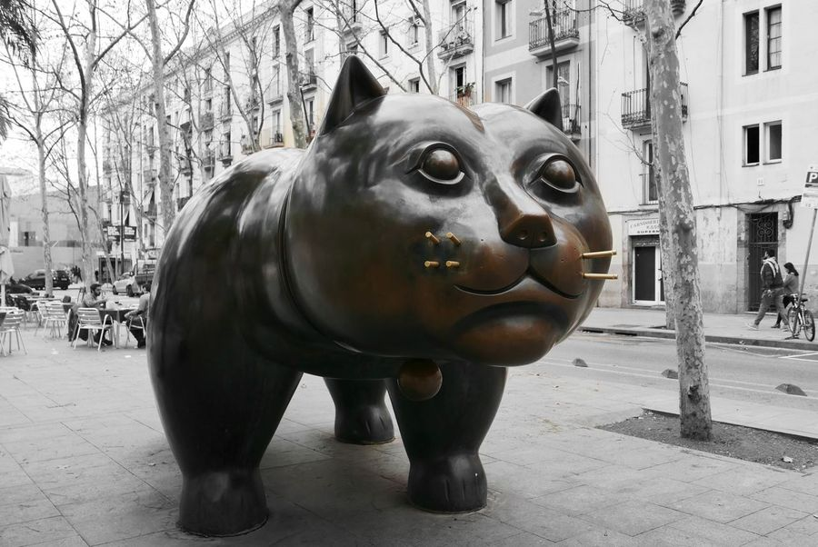 Sculpture One Animal Botero Art Black And White Bw_collection Monocrome Photography Cat Lovers Excellent_bnw Barcellona Neighborhood Map Your Ticket To Europe
