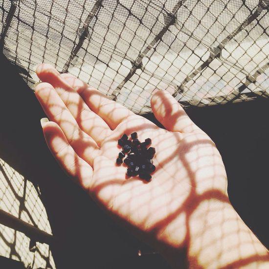 IPhoneography Swarovski Crystals Black