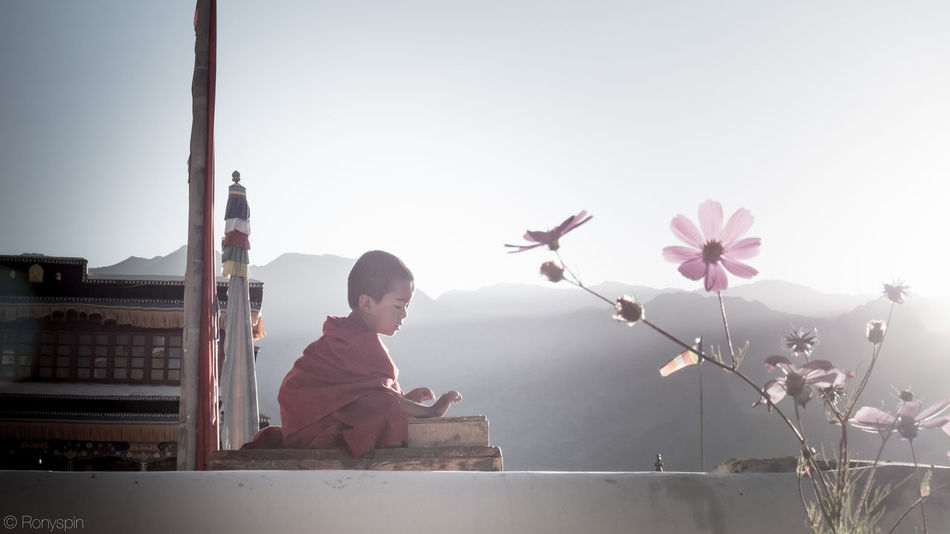 little buddah monk Buddha Monastery Travel Childhood Clear Sky Flower Growth Laddakh Leisure Activity Lifestyles Monk  Nature Outdoors People Real People Sky Thiksey Peace