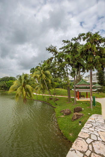 Marsiling Park, previously known as Woodlands Town Garden. A really idyllic park. I really enjoyed the peace and quiet here back in June 2018. Palm Tree Pond Public Park Beauty In Nature Coconut Palm Tree No People Scenics - Nature Tranquil Scene Tranquility