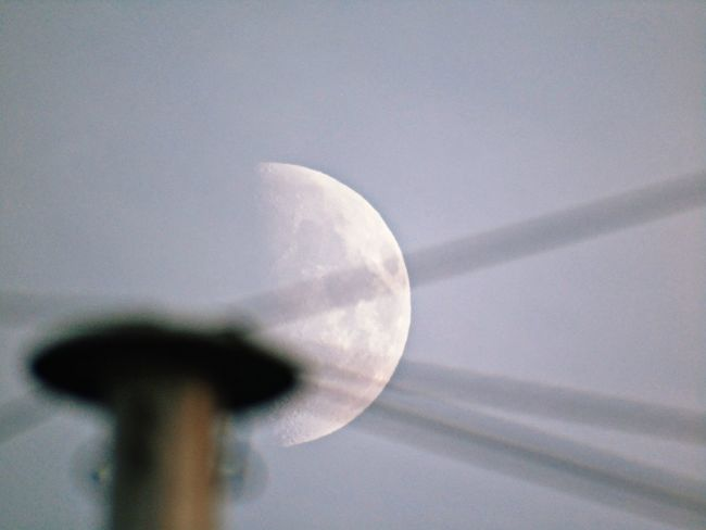 Close-up Moon Low Angle View No People Astronomy Moon Surface Space Nature Sky Day Focus On Background To Nights Moon Half Moon Beauty In Nature