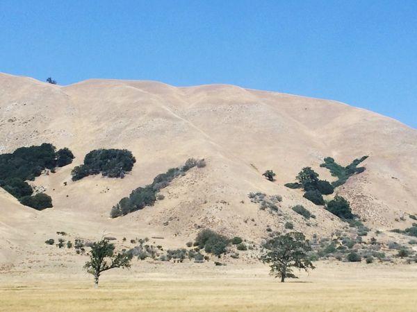 Desert mountain side