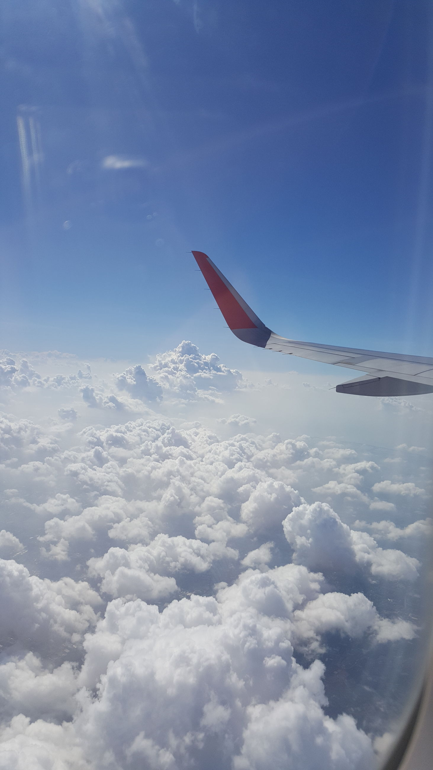 flying, transportation, mid-air, mode of transport, sea, blue, air vehicle, aircraft wing, airplane, travel, on the move, nature, sky, part of, water, day, motion, beauty in nature, cropped, outdoors