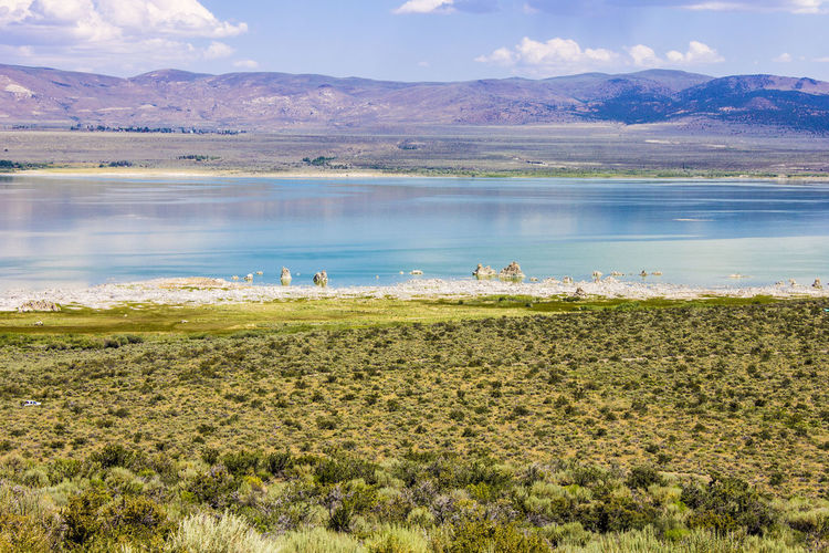 Mono Lake, a large, shallow saline soda lake in Mono County, California, with tufa rock formations Animal Themes Beauty In Nature Day Grass Lake Landscape Mono Lake Mono Lake California Mountain Mountain Range Nature No People Outdoors Scenics Sky Tranquil Scene Tranquility Tufa Water
