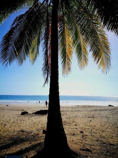 Porque en el mar la vida es más sabrosa🐚🐚🌅🙌 Beachtime♥♥ Costa Rica First Eyeem Photo
