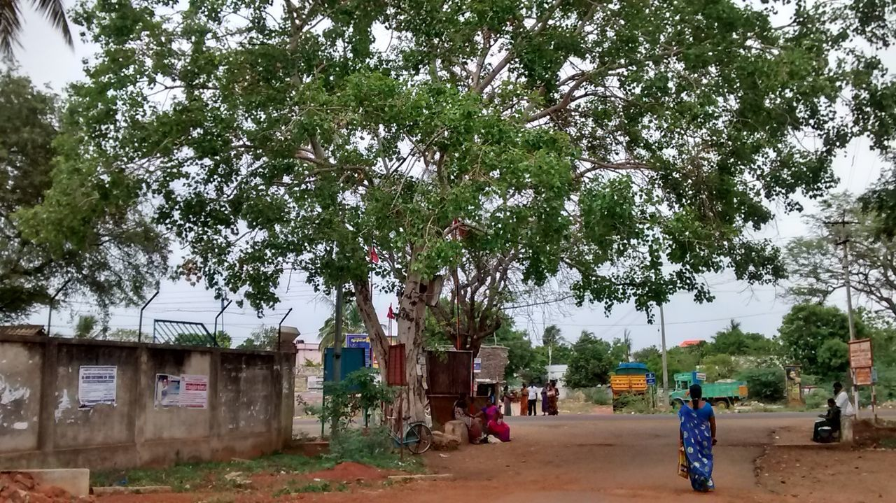 tree, real people, growth, day, men, lifestyles, architecture, built structure, building exterior, outdoors, women, leisure activity, nature, sky, one person, mammal, people