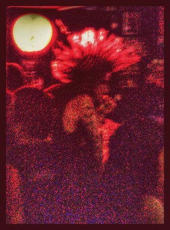 Punk Punksnotdead Punk Rock Mohican Rock'n'Roll Radioactive GetbetterwithAlex EyeEm Best Shots