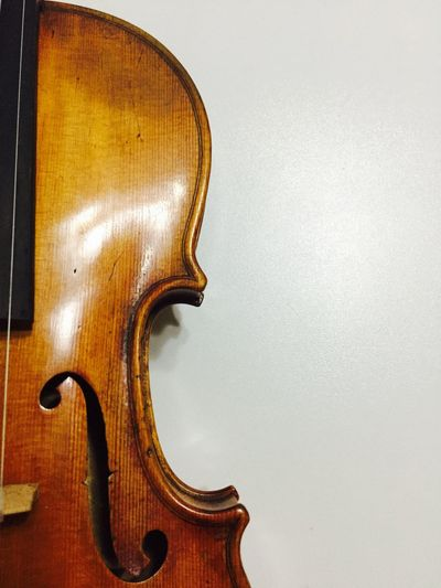 Violin detail The Week On EyeEm Arts Culture And Entertainment Beauty Cello Classical Music Close-up Day Double Bass Indoors  Instrument Maker Italy Music Musical Instrument Musical Instrument String No People String Instrument Violin White Background Wood - Material