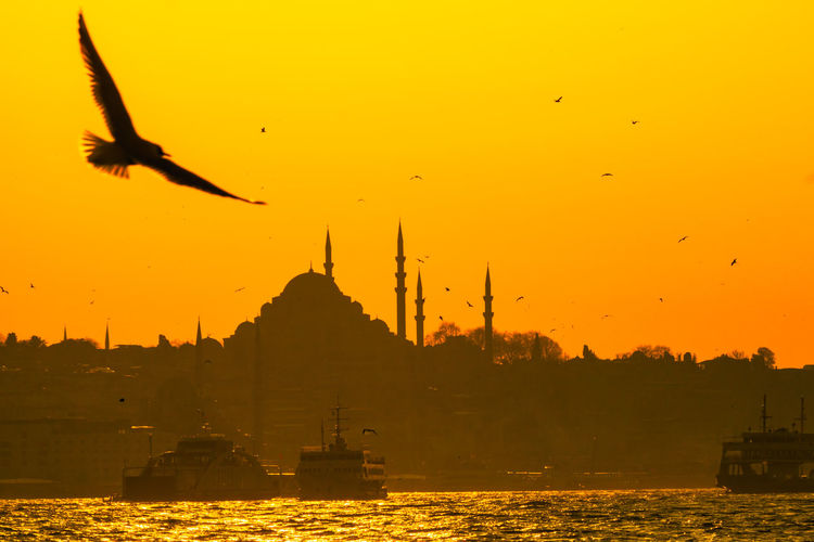 Silhouette birds flying over mosque against sky during sunset