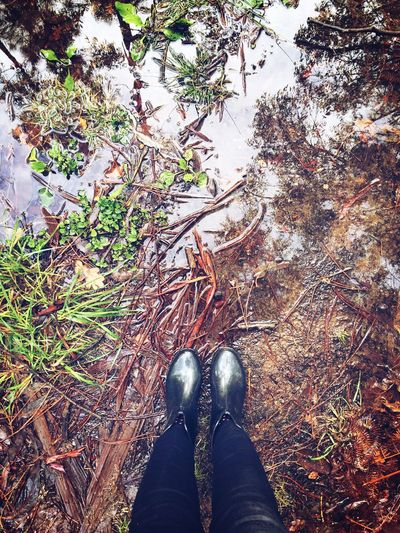 Shoe Low Section Human Leg Standing One Person Personal Perspective High Angle View Real People Autumn Water Galicia Boots Puddle Nature Human Body Part Wet Rainy Days Day Outdoors Directly Above Leaf Nature Grass Close-up People