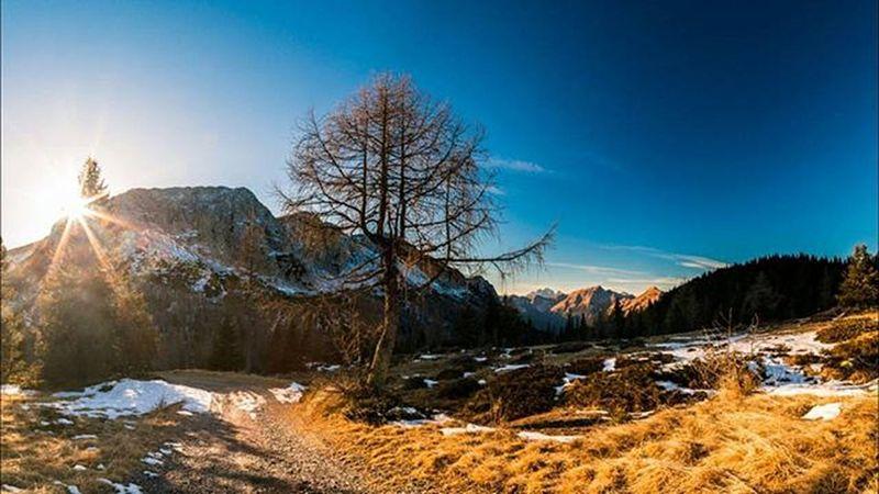 Last shining Sunset Friuliveneziagiulia Friuli_bestsunset Mountains Alps Trekking Travel Outdoor Snow Winter Tree Ice Cold Colors Ray Orange Peak Alpine Plan Valley Udine