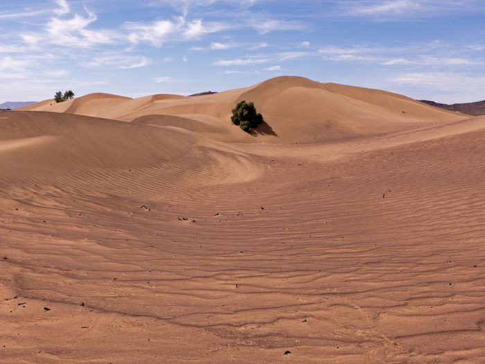 Desert Sand Land Climate Landscape Scenics - Nature Sand Dune Sky Arid Climate Environment Nature Tranquility Beauty In Nature Tranquil Scene Day Non-urban Scene No People Outdoors Morocco Africa Physical Geography Extreme Terrain Eroded Atmospheric Remote