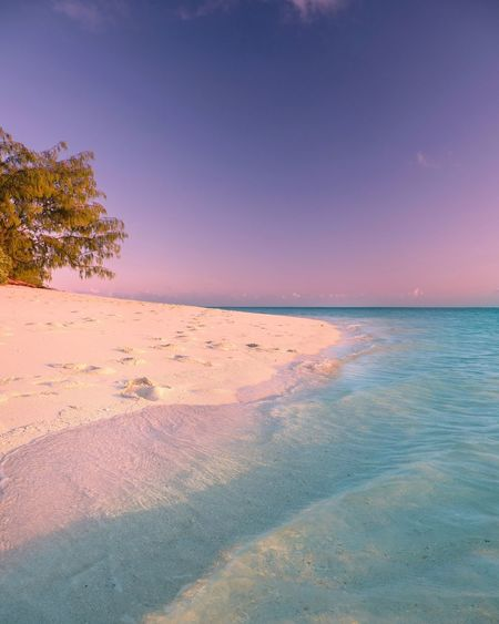 Great Barrier Reef Heron Island, Australia Queensland Australia Scenics Tranquil Scene Tranquility Beauty In Nature Nature Outdoors Sea No People Sand Landscape Sky Day Water Horizon Over Water