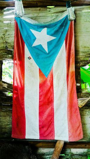 Flag Hanging Orgullo Vida Campesina Desde El Campo La Monoestrellada Patria Caribbean Life Boricua Meanwhile In Puerto Rico... Puerto Rico Multi Colored