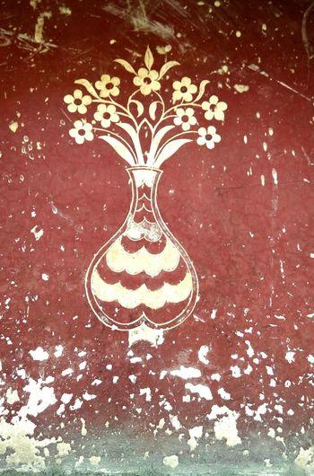 Flower Flowerpot Old Painted Wall RajasthanArt Wall Art Sunlight Shadows & Lights