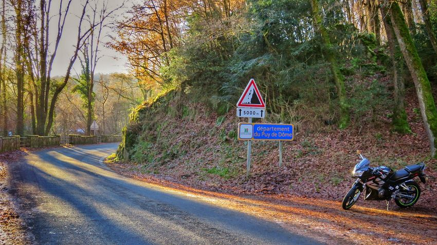 Tree Information Sign Warning Sign Communication No People Outdoors Day Road Road Sign Signboard Nature Cold Temperature Tranquility Beauty In Nature Beautiful Cbr125 Winter Beautifulview Nature Beautiful Colors Forest Tree Auvergne Canon Canonphotography Traveling Home For The Holidays