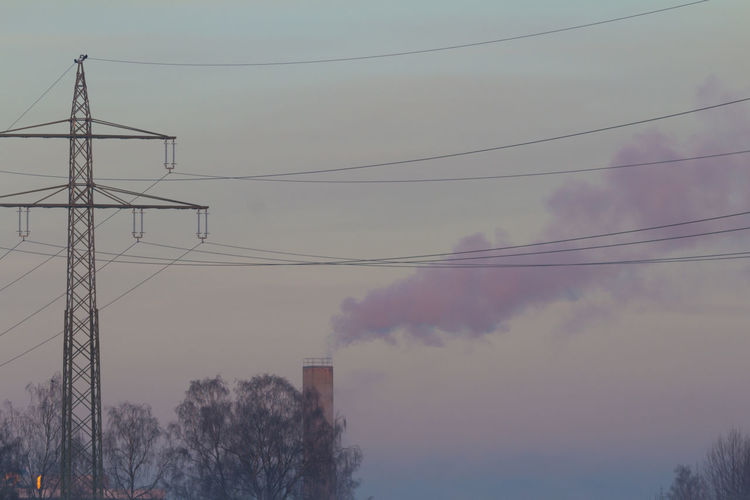 Cable Connection Day Electricity  Electricity Pylon Fuel And Power Generation Low Angle View Nature No People Outdoors Power Line  Power Supply Sky Technology Tree