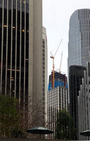Construction in a cityscape. Architecture Building Exterior Skyscraper Built Structure City Modern Tree Outdoors No People Low Angle View Day Development Office Building Exterior Building Story Sky Cityscape Urban Skyline Office Block Construction Crane Construction