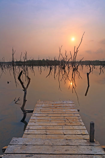 Sunrise over a calm lake or small jetty bridge, clouds and silhouette of dead trees in the reflection water Water Sunset Reflection Tranquility Beauty In Nature Lake Sky Tranquil Scene Scenics - Nature Wood - Material No People Pier Nature Non-urban Scene Orange Color Idyllic Standing Water Sun Outdoors Sunrise Jetty Silhouette Dead Dead Tree Clouds And Sky Morning Wooden Tropical Bridge Relax