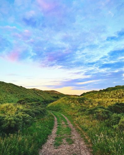 Scenics Tranquil Scene Tranquility Nature Landscape Beauty In Nature Sky The Way Forward Outdoors No People Cloud - Sky Grass Road Field Mountain Day Growth Path Sunset Cottoncandy Cotton Candy Sky Cottoncandyclouds