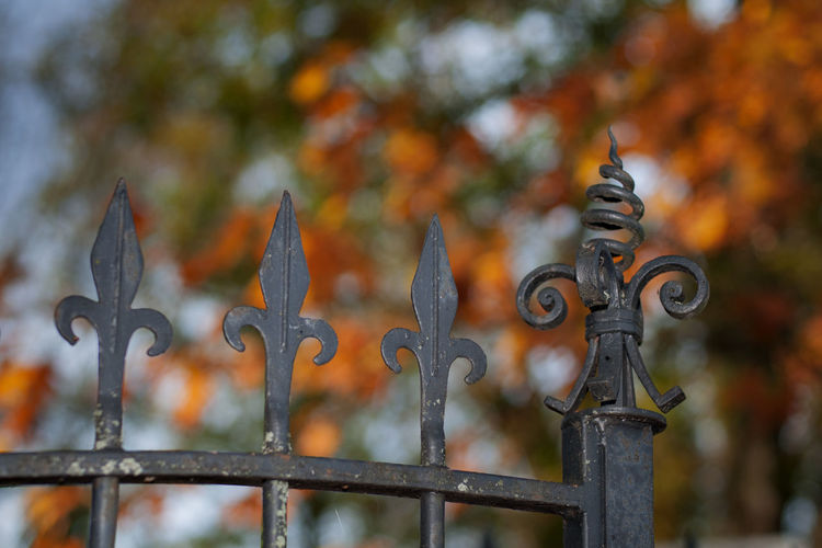 Low angle view of metallic fence during autumn