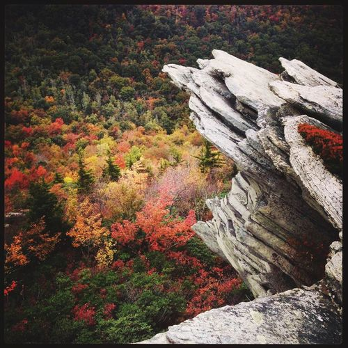 Grandfather Mt. in North Carolina DeLeonStrong Optoutside