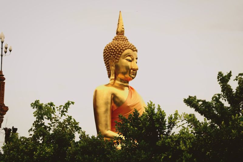 Buddha Buddha Statue Buddha Image Temple Pray Imagination Image Gold Golden