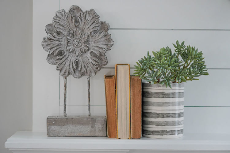 Close-up of potted plant on table against wall at home