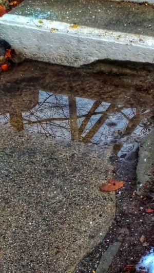 Winter reflections with texture 1 Tree Beauty In Nature Backgrounds Cloud - Sky Water Reflection Day Puddle Outdoors High Angle View No People Nature Wet