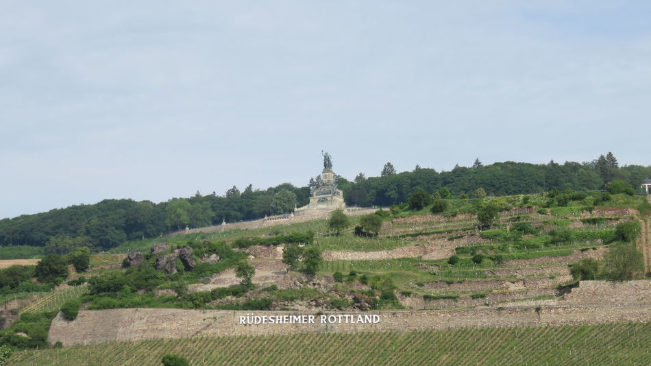 niederwald monument Ancient Architecture Built Structure Day Green Color History Monument Nature No People Outdoors Rhine Sky The Past Tourism Travel Destinations Tree Vineyard Wine Feel The Journey