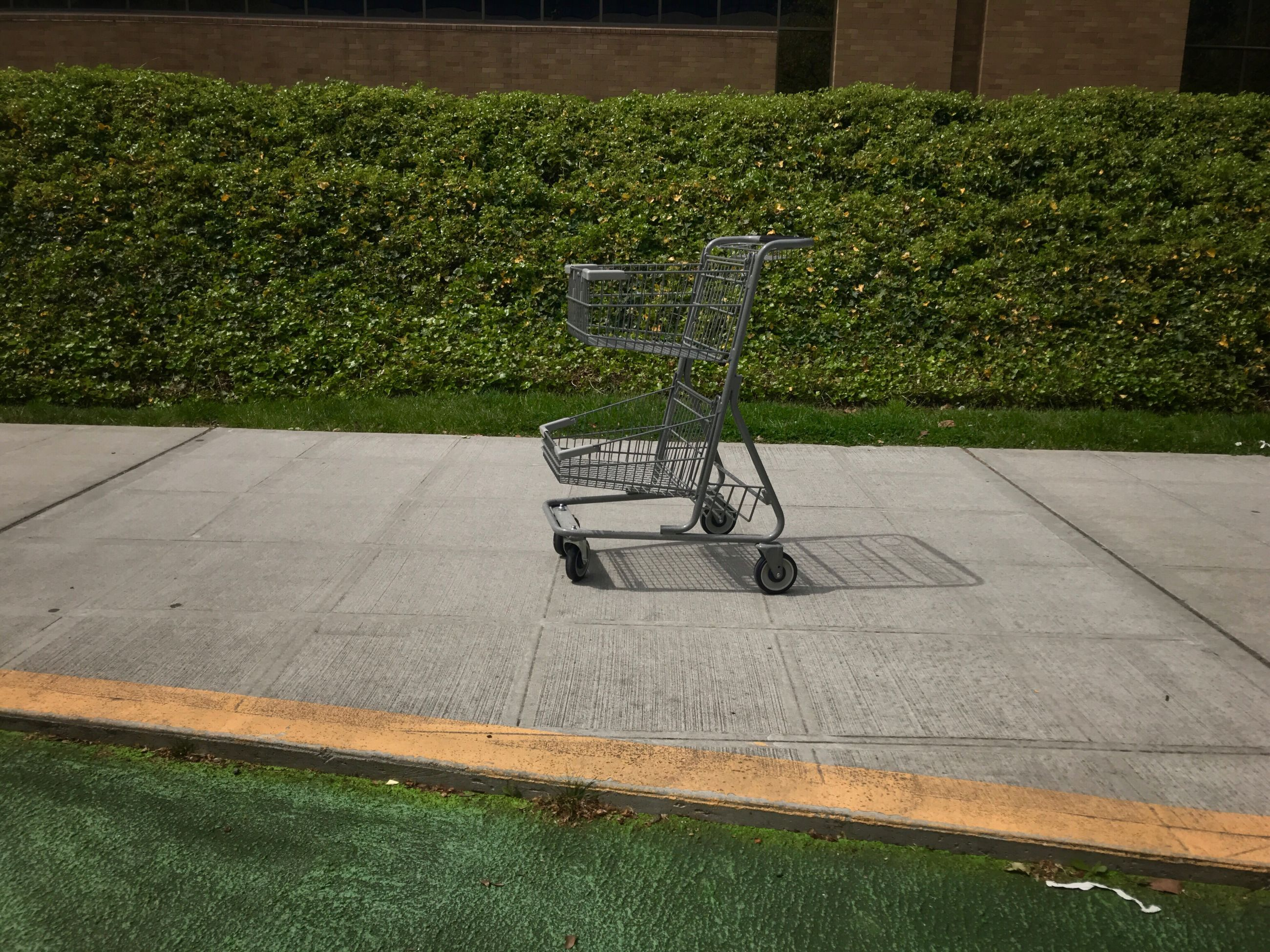 shopping cart, absence, shopping, plant, seat, empty, no people, grass, day, trolley, consumerism, green color, nature, outdoors, chair, sunlight, abandoned, metal, shadow, side view, hedge