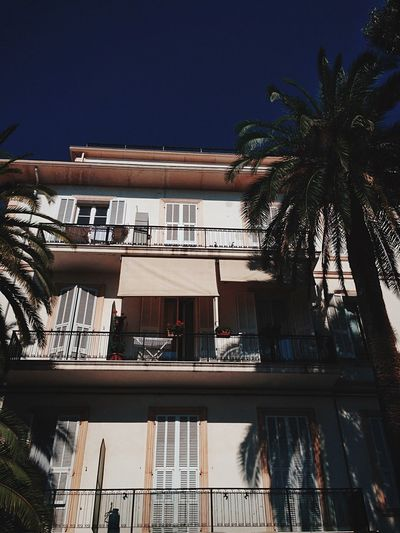Once upon in Italy Palm Tree Architecture Building Exterior Low Angle View Window Built Structure Tree No People Outdoors City Day Italy Shadow Summer EyeEmNewHere EyeEmNewHere An Eye For Travel
