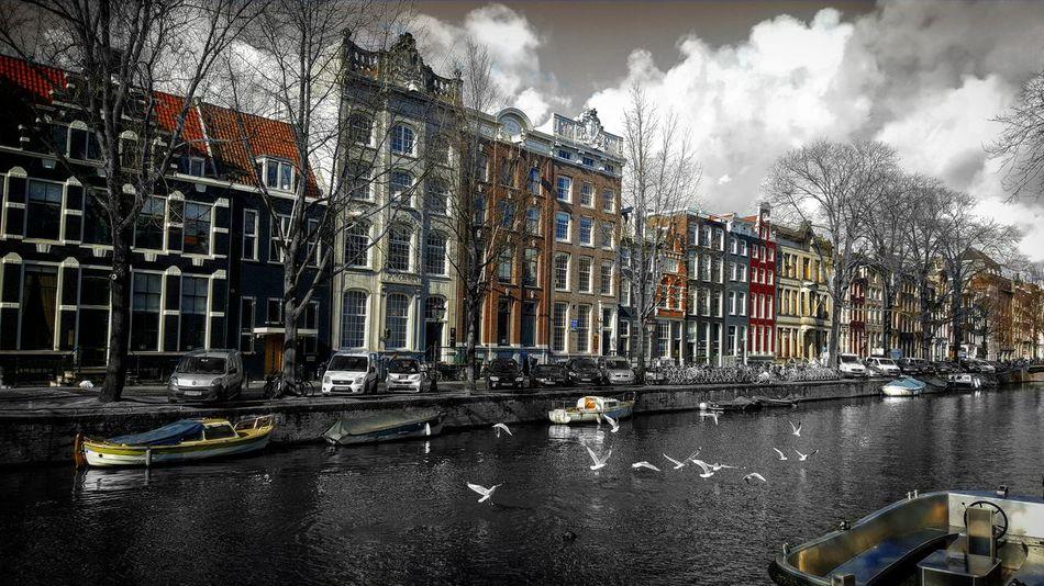 Amsterdam Amsterdamcity Amsterdam Canal Canal Amsterdam.nl Amsterdam Streets Netherlands Traveling Colorsplash Splashing Colorsplash_kings Colorsplash_of_our_world Colorsplash_theworld Colorsplasheffect Colorsplash_fun Colorsplash_bw Colorsplash_dr Colorsplash_captures