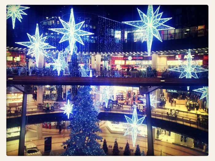 Merry Christmas! Lubin Star Gallery °.°!