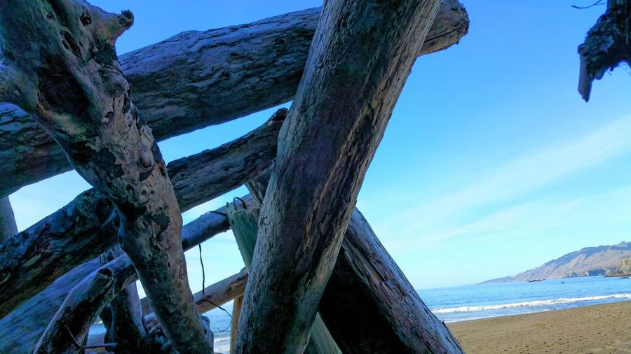 A Shelter on the Beach Logs Shelter Beach Sand Ocean Sea Sky And Clouds Slats Angles And Lines Pattern Zen Copy Space Peaceful Distance Depth Brown Meditation Rewilding Timeless Multi Colored Water Outdoors Beach Sky Blue Nature Day