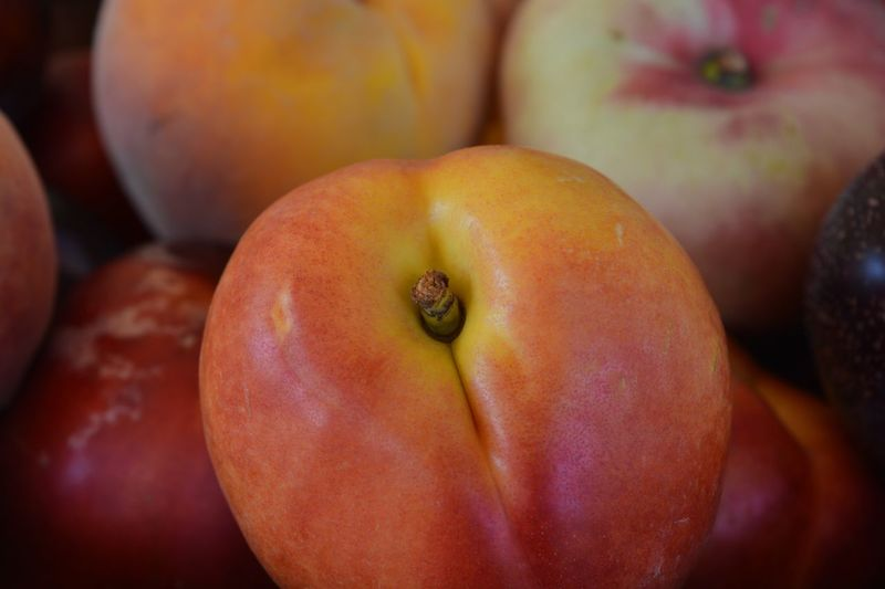 Summer fruit, peaches, donut peach, nectarine and plum Health Summer Fruits Emoji Peach Emoji Plum Donut Peaches Nectarine Peach Food And Drink Healthy Eating Food Freshness Fruit Wellbeing Close-up Indoors  No People Red Focus On Foreground Still Life Ripe Healthy Lifestyle Juicy